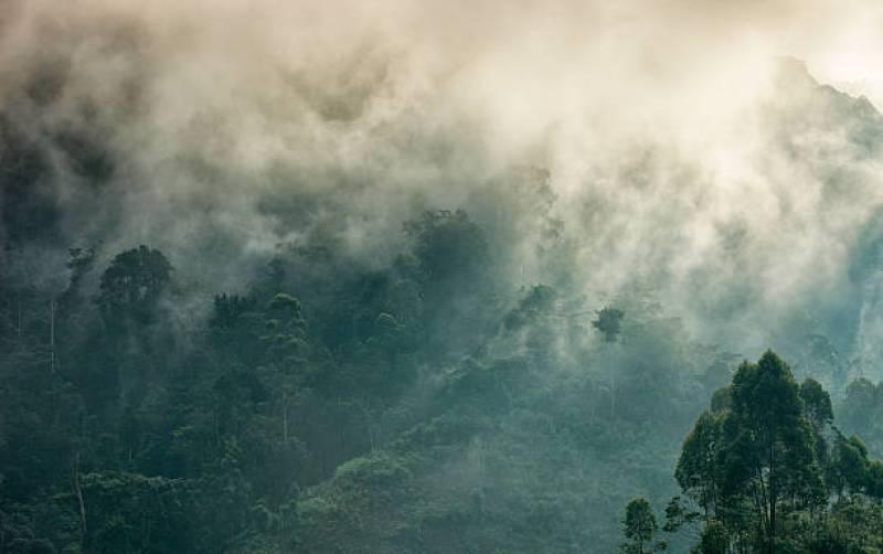 Molti turisti associano l'Uganda solo al gorilla trekking, in realtà l'Uganda è uno dei Paesi più belli ed interessanti dell'Africa.