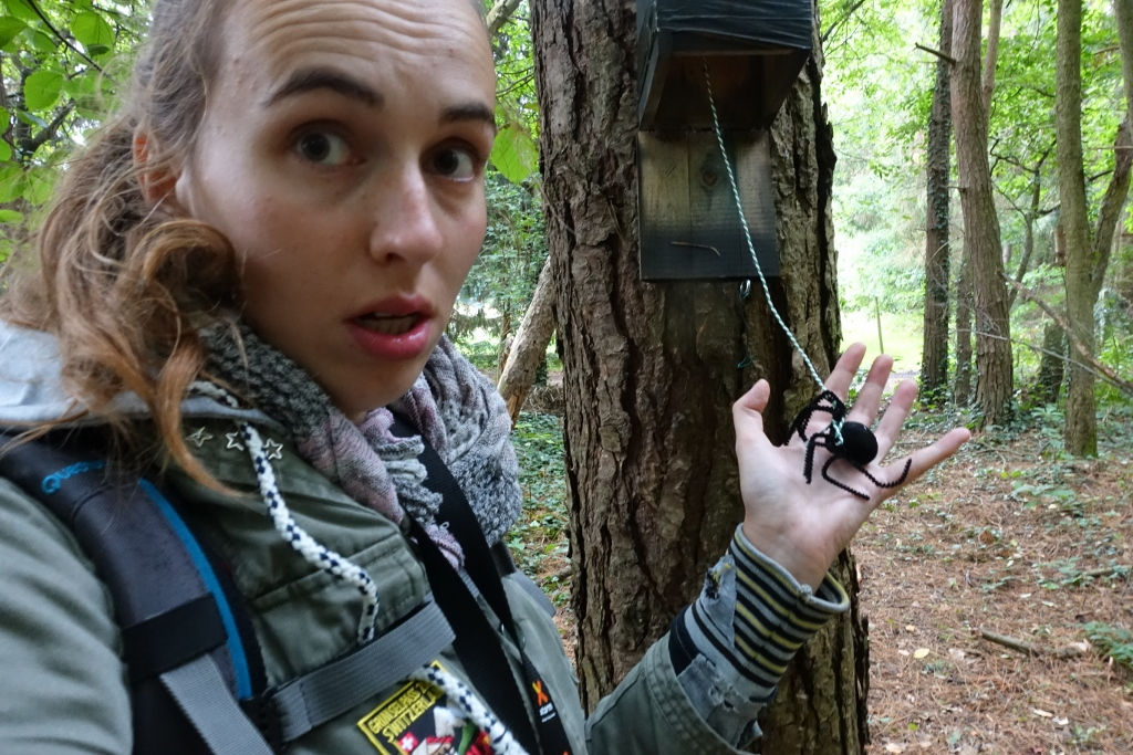 Microadventure Bivakzone Meerdaalwoud 3