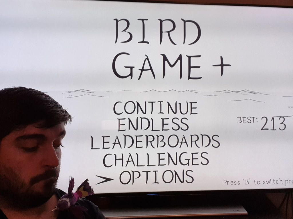 REVIEW: Bird Game+