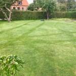 Robomow græsplæne