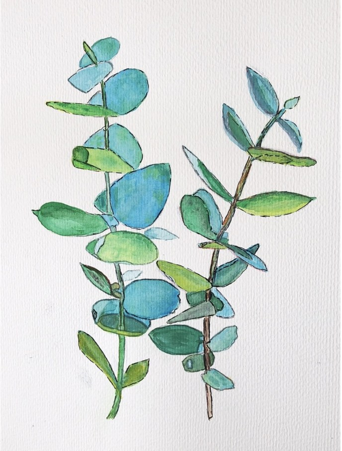 Eucalyptus (watercolor and pen on cold press paper, 8x10) - $5