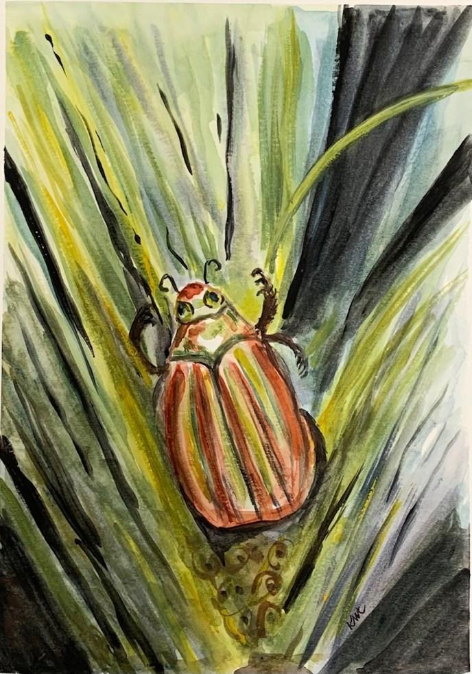 Jewel Scarab No. 2 (watercolor, 11x15) - NFS