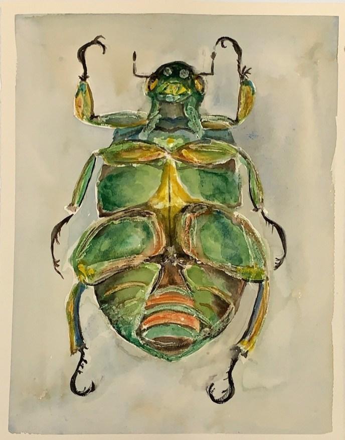 Emerald Jewel Scarab (watercolor, 11x15) - NFS