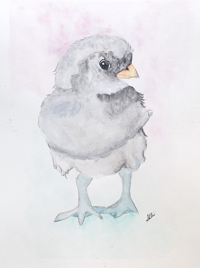 Baby Chicken (watercolor, 8x10) - NFS