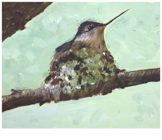 Nesting Hummingbird (acrylic), Price negotiable