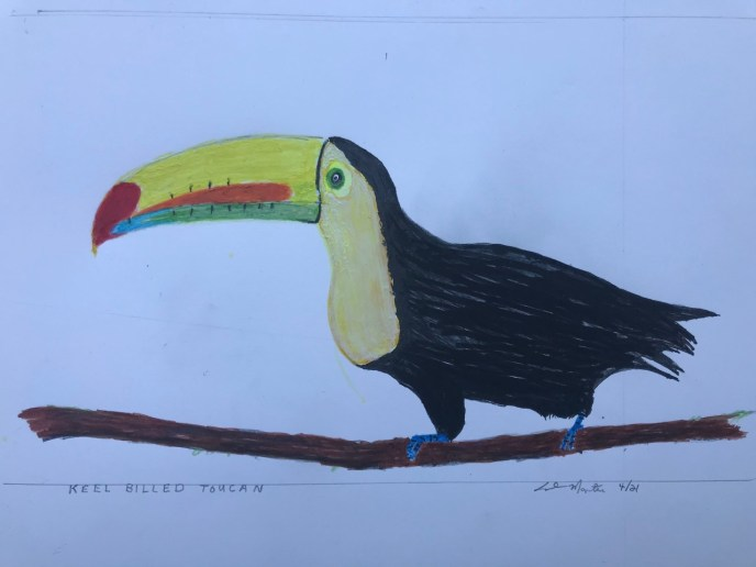 Keel Billed Toucan (acrylic, 8x12) - Price Negotiable