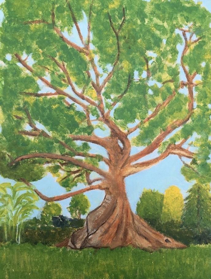 Kapok Tree (acrylic on canvas board, 9x12) - Price Negotiable