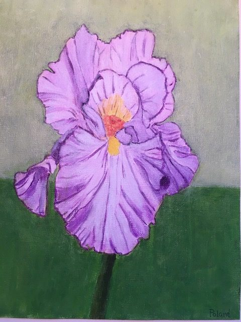"Donna Poland ""Lavender Iris"" (acrylic), Neg"