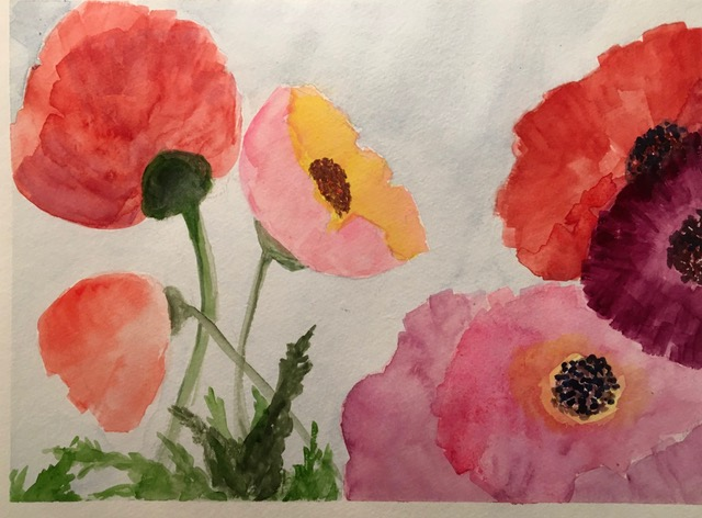 "Patricia Bisshopp ""Pink Poppies"" (watercolor), Neg"