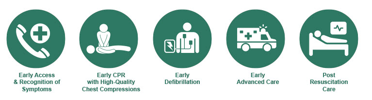 An infographic detailing the chain-of-survival related to Sudden Cardiac Arrest.