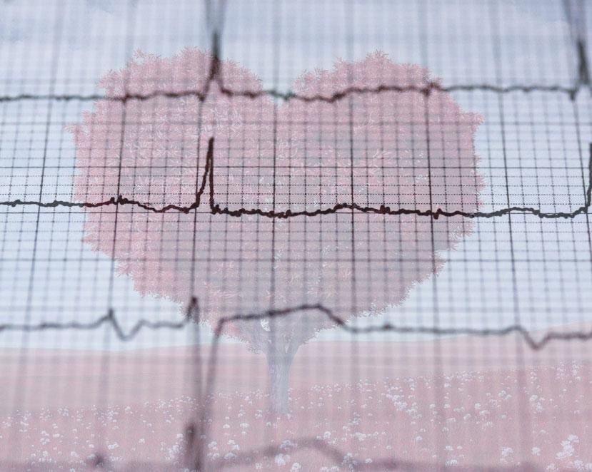 Sudden Cardiac Arrest Report LifeNet 2017