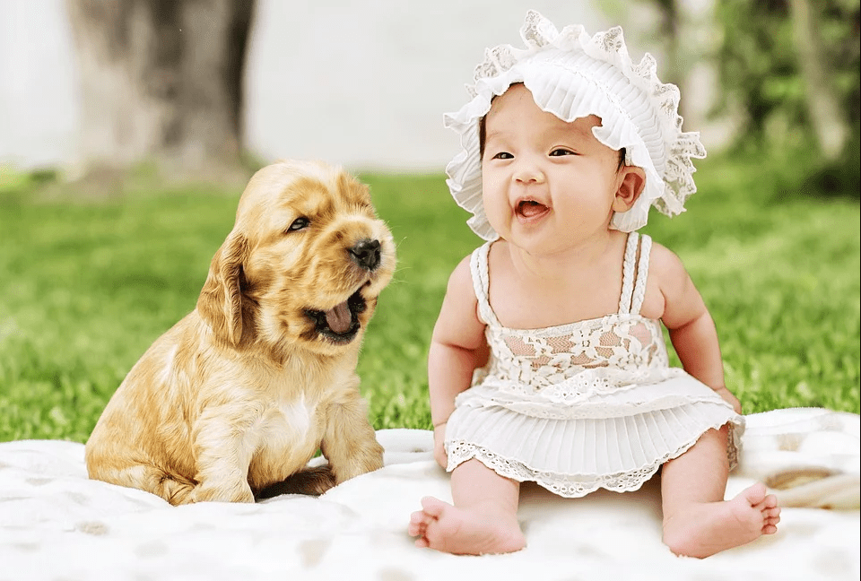 Americans Now Have More Dogs Than Kids Because So Few People are Having Children