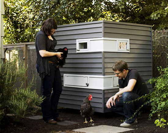Modern chicken coop and urban farmers life of an architect for Modern chicken coop designs