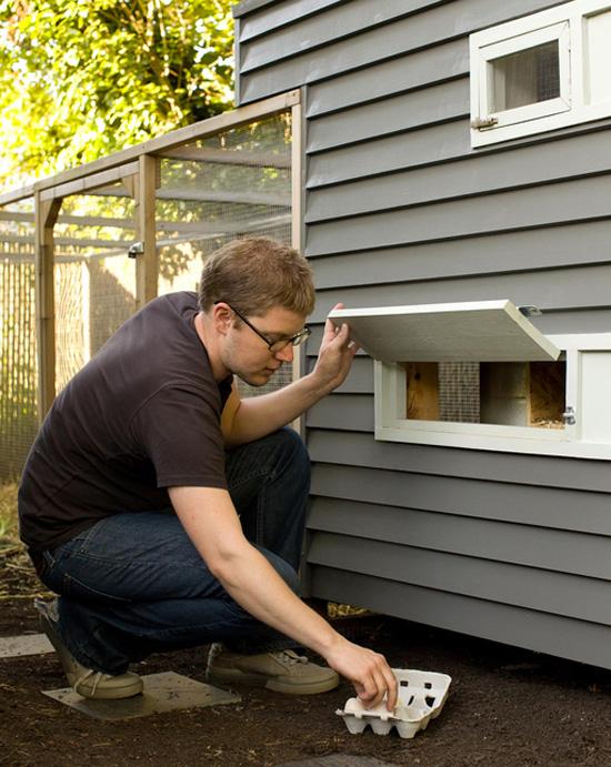 modern chicken coop via Dwell
