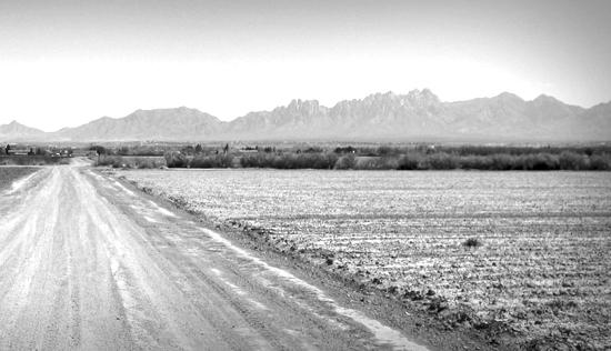New Mexico Farm