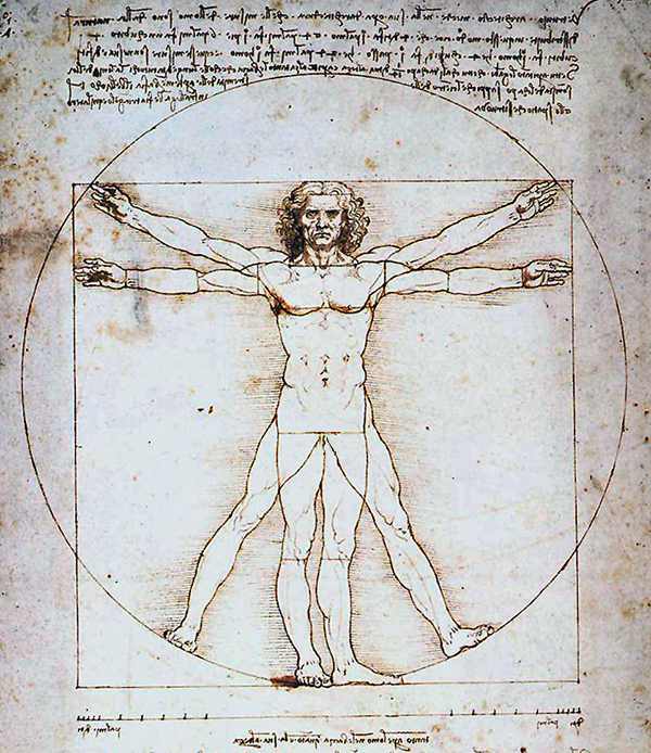 leonardo da vinci the vitruvian man. Black Bedroom Furniture Sets. Home Design Ideas
