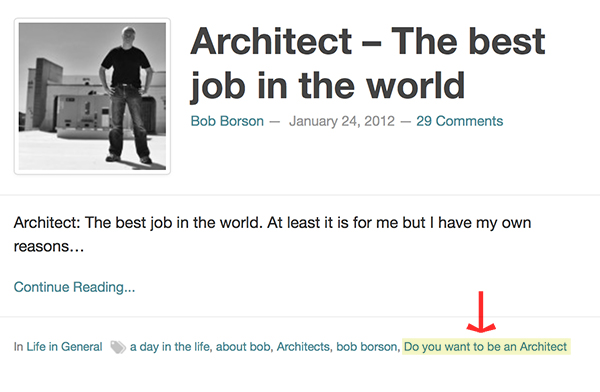 Architect - The Best Job in the World