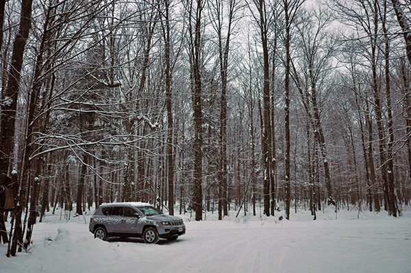 Parked in the Woods