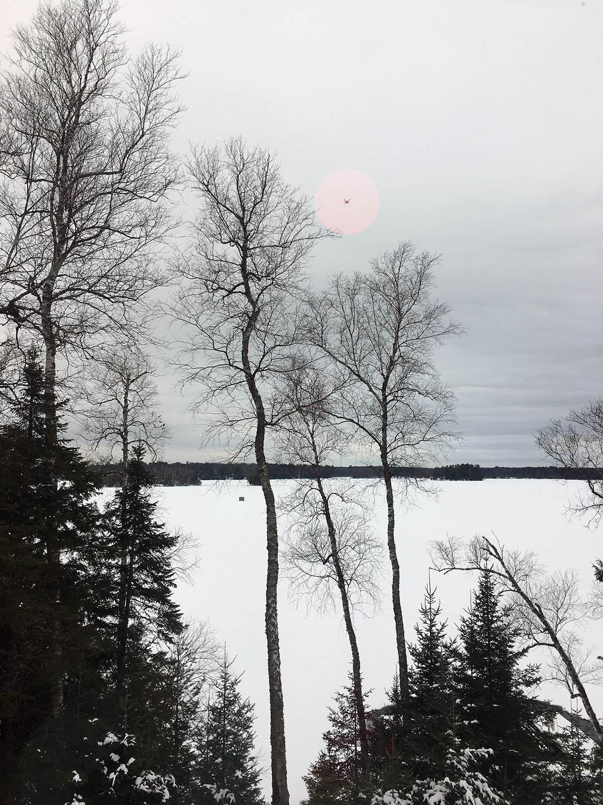 Looking out towards the lake - look for the drone