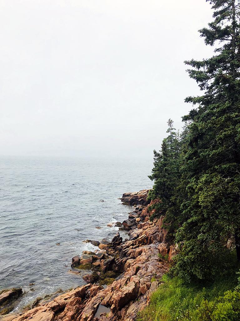 Main Coastline - photo by Bob Borson
