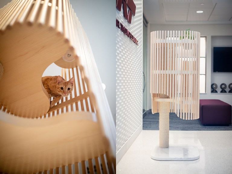 Cat Tower composite - Malone Maxwell Borson Architects