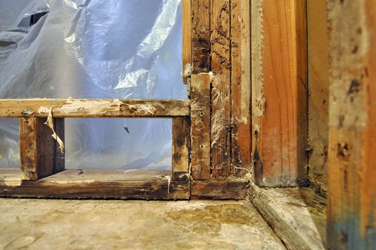 Master Bathroom rotted shower framing 02
