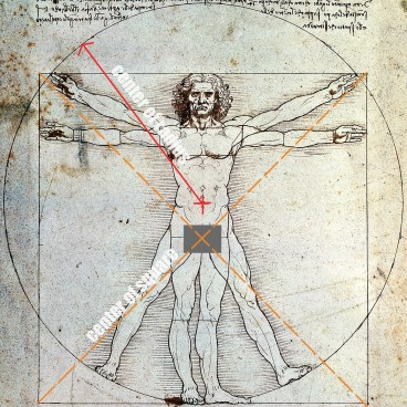 Vitruvian Man Diagram