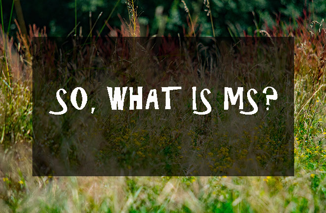 what is multiple sclerosis