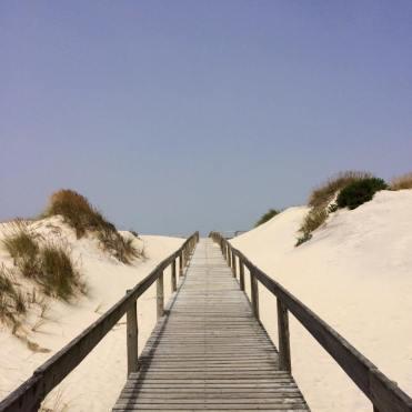 beach, summer, july, favorites