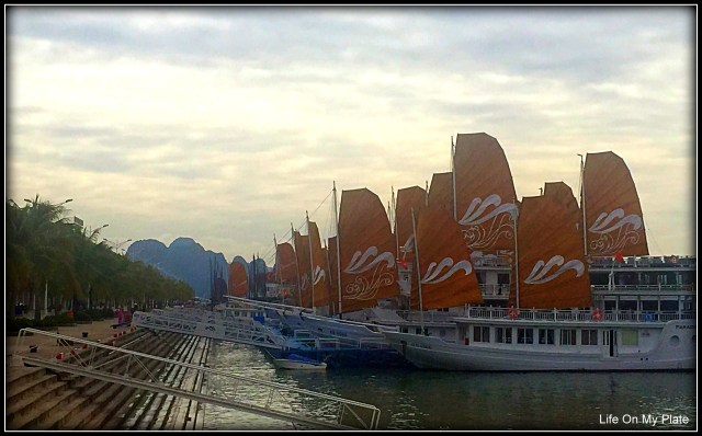 Luxury Cruise to Halong Bay