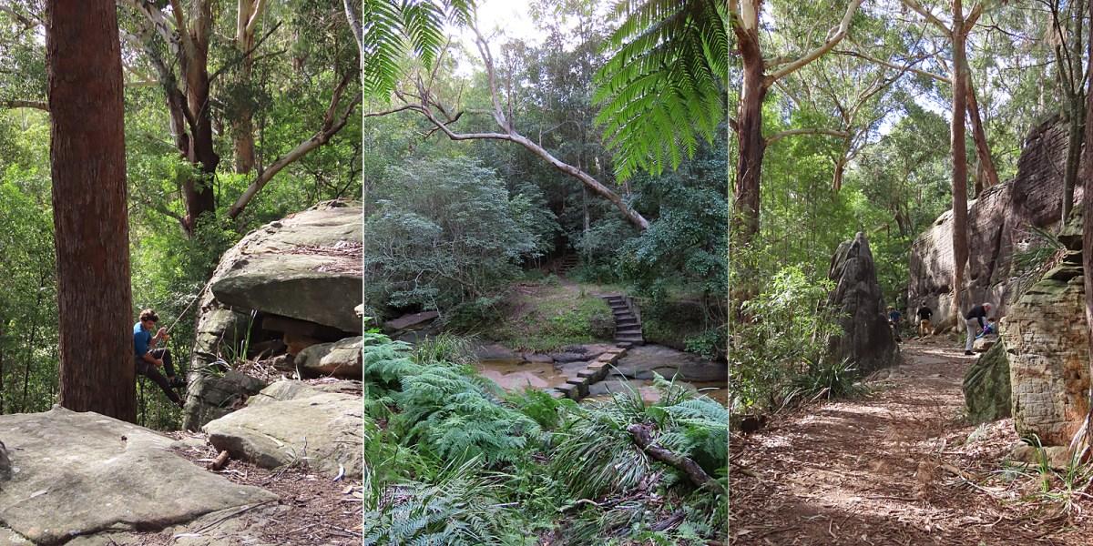 Lindfield Rocks & Trails