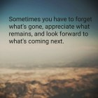 Sometimes You Have To Forget....