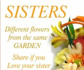 Sisters Different Flowers….
