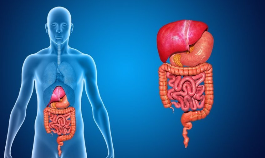 What Causes Bloating In The Stomach?