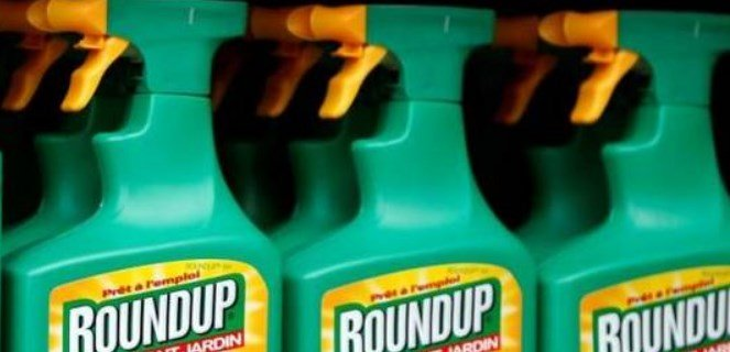 Report Shows Alarming Levels of Monsanto's Weedkiller