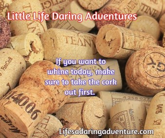 LittleLifeDaringAdventures.3F