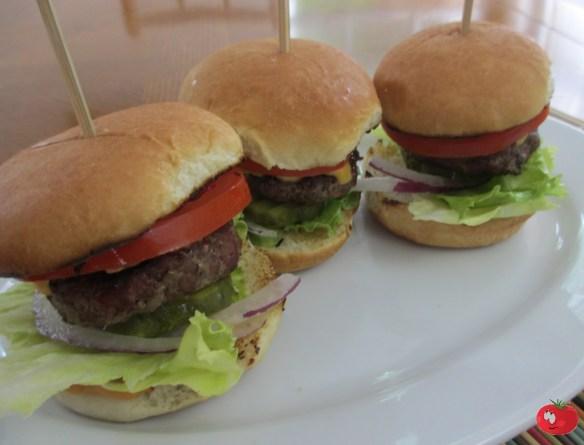Weber Burger and Slider Presses