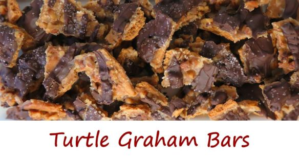 Turtle Graham Bars