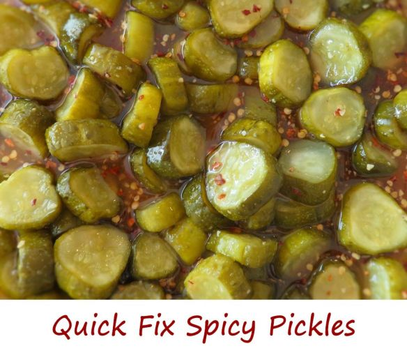 Quick Fix Spicy Pickles