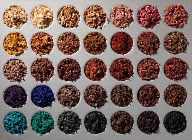 jaclyn hill Morphe palette swatches