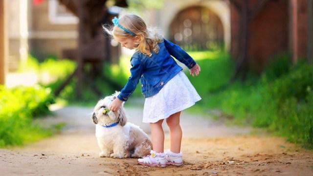 cute-girl-play-white-dog