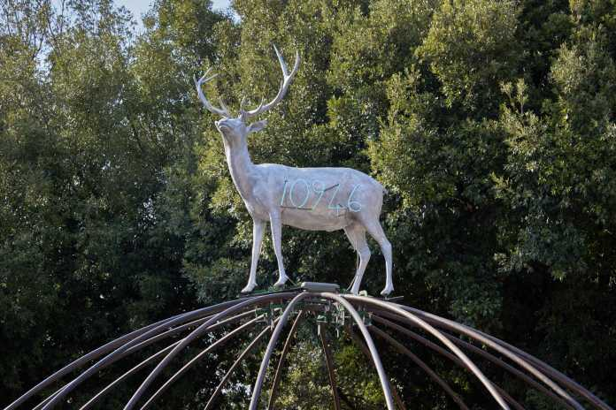 Back to Nature Mostra Roma