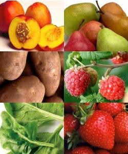 Why Go Organic – Part 1