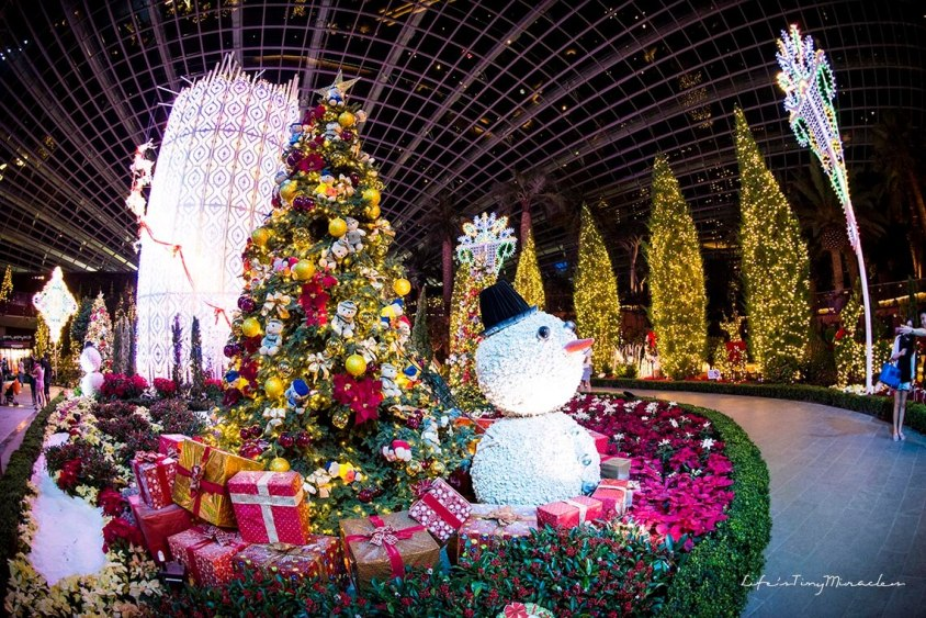 Christmas Wonderland 14