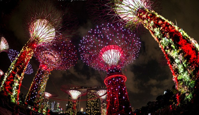 Celebrate SG50 at Gardens by the Bay!