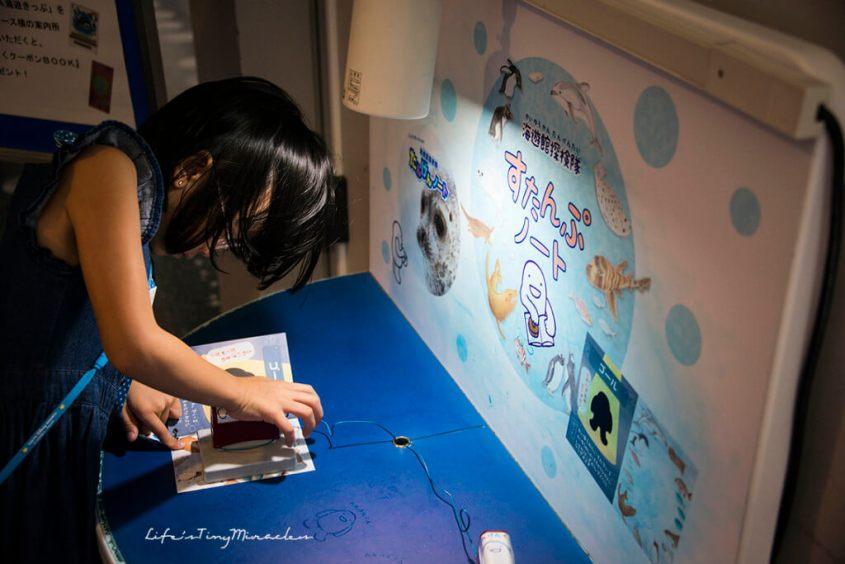 Osaka-Aquarium54