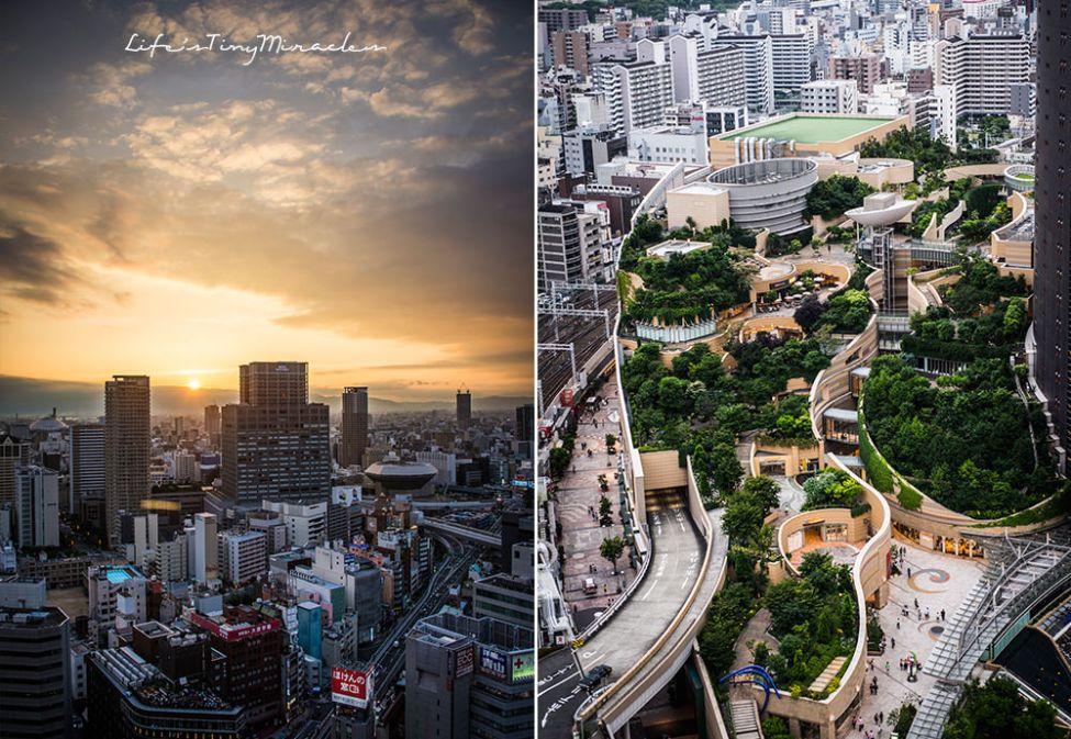 Osaka Collage 5