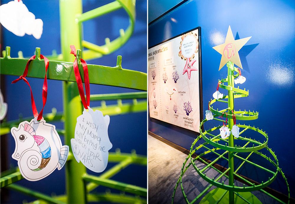 SEA Aquarium Christmas Collage 1