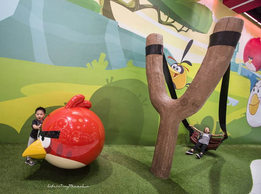 Angry Birds Activity Park250