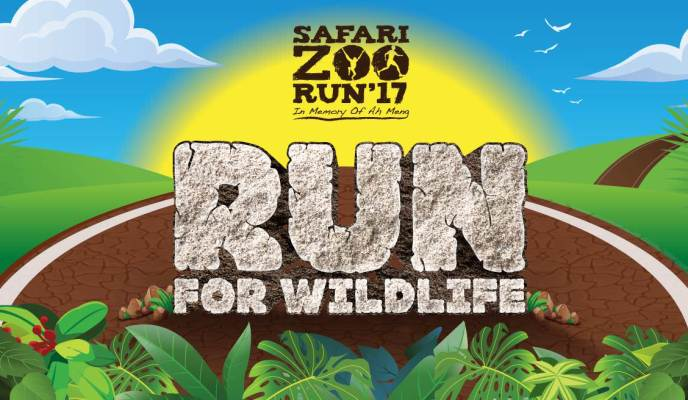 Safari Zoo Run 2017: Run for Wildlife